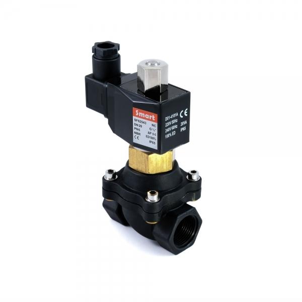 Клапан электромагнитный пластиковый нормально-открытый ARM SF6254 (AC220V, AC110V, AC24V, DC12V, DC24V)